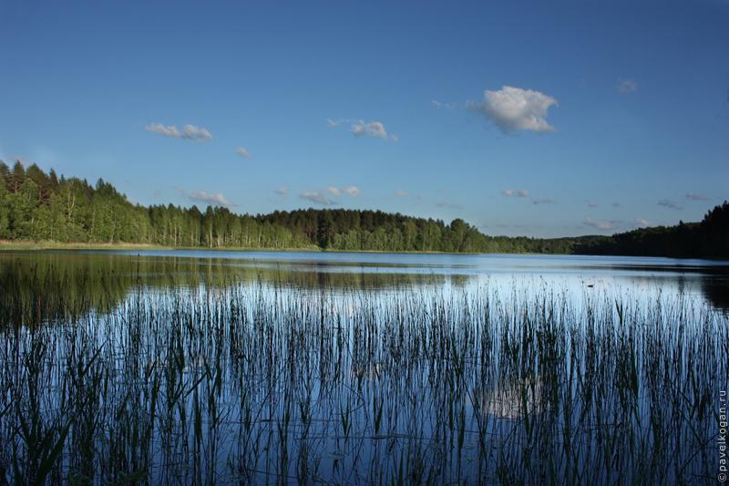 Озеро Ельчинское (Ельчина, Ельнина...)