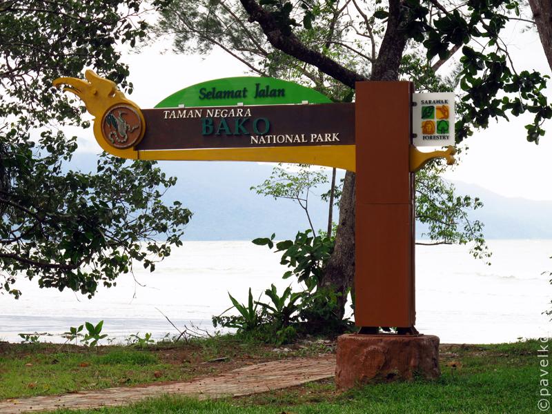 Национальный парк Бако: ночная прогулка (15)