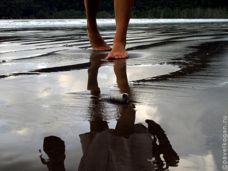 Национальный парк Бако: ночная прогулка (13)